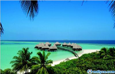 马尔代夫杜妮可鲁岛6天4晚自由行香港新航转机